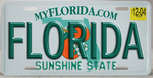 You\u0027ll get your Florida plates and registration stickers after filling out all of the needed forms. Put your registration stickers on the correct spot of ... & Titling and Registration in Florida | MyImprov